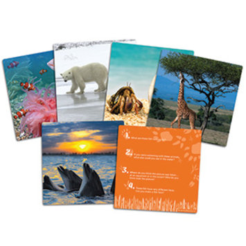 Learning Resources Inc. Wild About Animals Snapshots - Critical Thinking Photo Cards