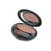 Shiseido The Makeup Accentuating Powder Blush - # B3 Glistening Brown - 6.5g/0.22oz