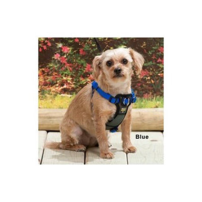 Coastal Pet Products Coastal Pet Walk Right Padded Harness - Blue: Large - (Fits Girth 26
