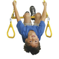 Swing-N-Slide Extra Duty Ring/Trapeze Combo