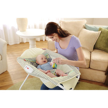 FISHER PRICE Fisher-Price Newborn Rock 'N' Play Sleeper, Morning Fog