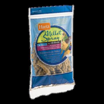 Hartz Millet Spray For All Birds - 12 CT