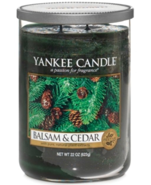 Yankee Candle Holiday 2 Wick Candle