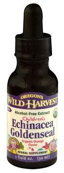 Oregon's Wild Harvest Children's Echinacea Goldenseal Organic Orange 1 fl oz