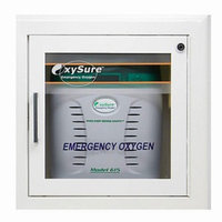 Oxysure Systems Surface Mounted Wall Box for Model 615 Emergency Oxygen System