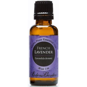 Edens Garden French Lavender 100% Pure Therapeutic Grade Essential Oil- 30 ml