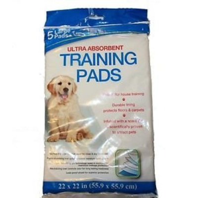Momentum Brands Pet Training Pads Leak Free - 5 Large Pads