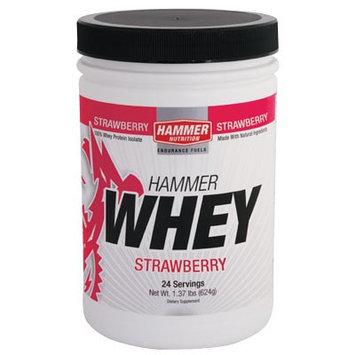 Hammer Nutrition Whey Strawberry, One Size - Men's