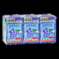 Santa Cruz Organic Grape Drink - 3 CT