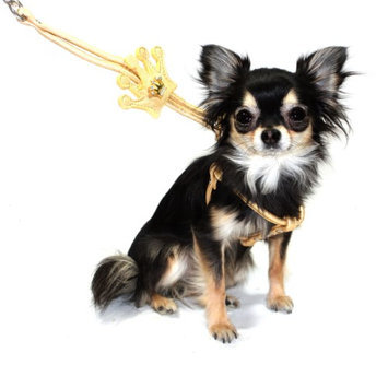 Hip Doggie Gold Crown Step - in Harness, S