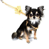Hip Doggie Gold Crown Step - in Harness, XS
