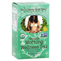 Earth Mama Angel Baby Organic Herbal Tea for Queasy Tummies - 1.3 oz