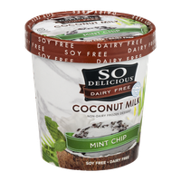 So Delicious Dairy Free Coconut Milk Frozen Dessert Mint Chip