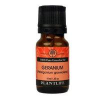 Plantlife Geranium (Pelargonium Graveolens) - Aromatherapy Grade 100% Pure Essential Oil