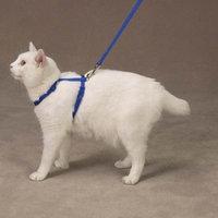 Savvy Tabby Nylon Cat Lead