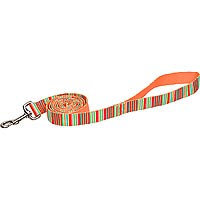 Planet Petco Red Legacy Eco Dog Lead
