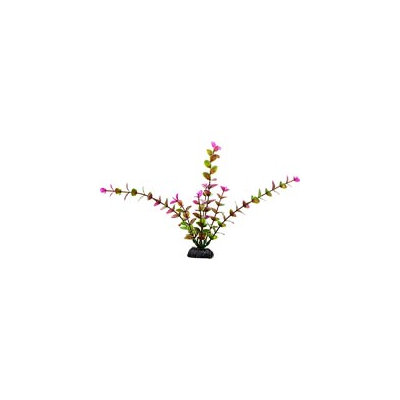 Petco Purple & Green Midground Aquarium Plant