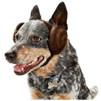 STAR WARS Princess Leia Dog Headband, Medium/Large