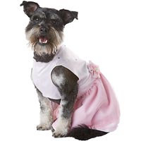 Petco Special Occasions Wedding Dog Flower Girl Dress, Large