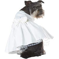Petco Special Occasions Wedding Dog Bride Dress, Medium