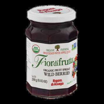 Fiordifrutta Organic Fruit Spread Wild Berries