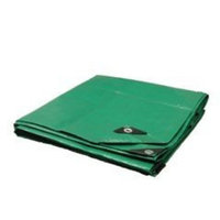 Trademark 30X50 Green / Black Heavy Duty 10 Mil Tarp Tarpaulin Canopy Tent, Boat. RV or Pool Cover
