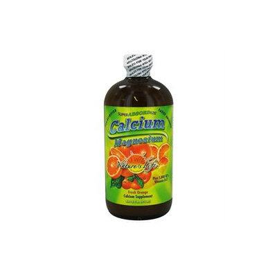 Nature's Life - Superabsorbeze Calcium Magnesium Liquid Fresh Orange - 16 oz.