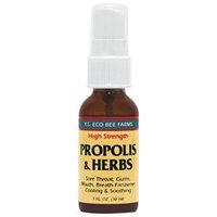 YS Royal Jelly/Honey Bee Propolis & Herbs - 1 Fluid Ounces Liquid - Bee Products