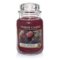 Yankee Candle Lush Berries 22oz. Jar Candle 22 Ounce, Purple