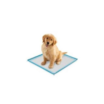 ClearQuest US5355 19 Silicone Puppy Pad Holder Blue
