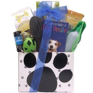 Puppy Power: New Pet / Dog Gift Basket