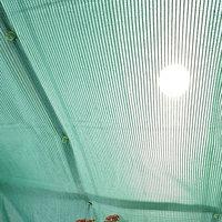 Poly-tex Poly-Tex HG1014 Green Shade Cloth 10x10