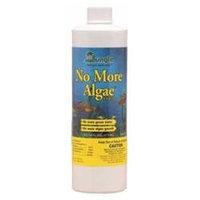 Jungle Laboratories AJUNL62016 No More Algae Liquid
