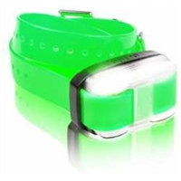 Grain Valley Dog Supply Edge-RX-Grn Edge Extra Receiver - Green