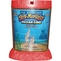 Big Time Toys Amazing Live Sea Monkeys Ocean Zoo