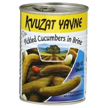 Kvuzat Yavne Cucumbers in Brine Small 13-17, 19-Ounce (Pack of 6)