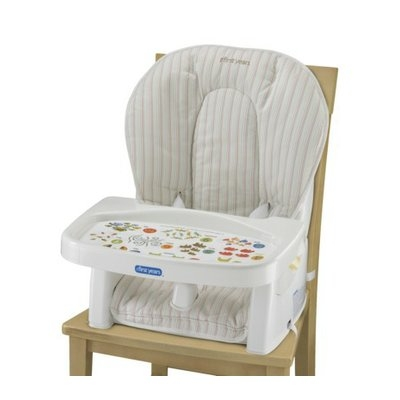 Learning Curve Newborn-to-Toddler Reclining Feeding Seat