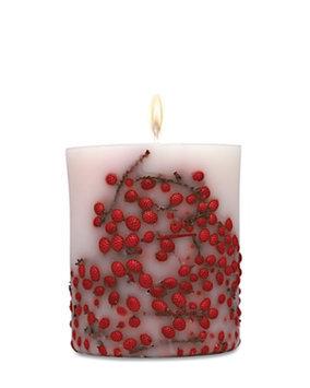 Acqua Di Parma Red Berries Candle