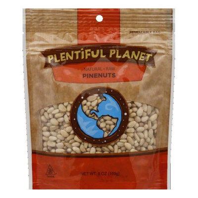 Plentiful Planet Nut Pine Raw Bag (Pack Of 6)
