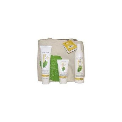 Matrix Biolage Smooththerapie Deep Smoothing Kit Bag, 4 Count