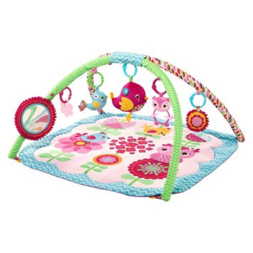 Bright Starts Activity Gym - Tweets Giggle Garden
