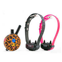 E-Collar Technologies Lady Remote Two Dog Training System Collar