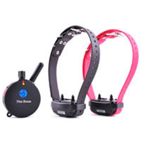 E-Collar Technologies Remote Two Dog Training System Collar