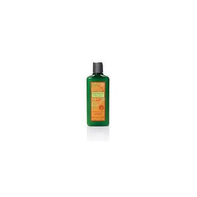 Andalou Naturals 49393  Mandarin Vanilla Shower Gel- 18-2 OZ