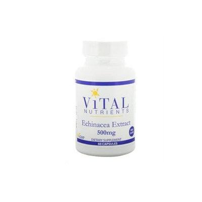 Vital Nutrient's Vital Nutrients - Echinacea Extract 500 mg. - 60 Vegetarian Capsules