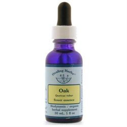 Oak Dropper, 1 oz, Flower Essence Services