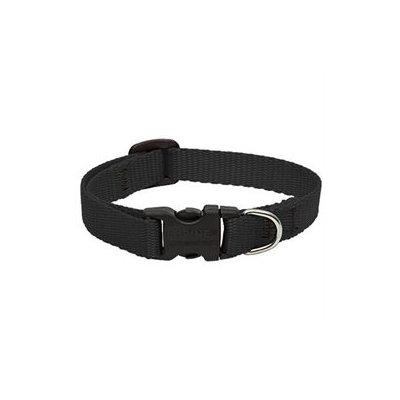 Lupine Adjustable Dog Collar - Black - 1 x 12-20 in