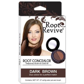 Langer Ent. Dba: Grayce Root Revive Powder Palette Concealer Kit With Pro-Quality Brush Dark Brown