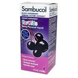 Sambucol Night Time Cold and Flu - Elderberry - 4 fl oz