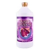 Buried Treasure Products - Liquid Plant Derived Minerals Concord Grape - 32 oz.